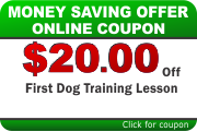 Dog Training Coupon