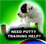 Need Potty Training Help?
